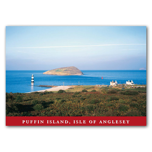 Puffin Island - Sold in pack (100 postcards)