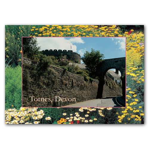 Totnes Devon - Sold in pack (100 postcards)