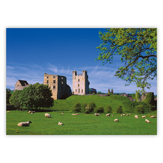 Helmsley Castle - Sold in pack (100 postcards)