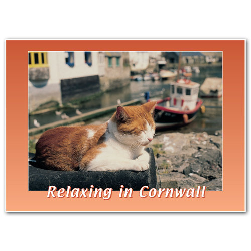 Cornwall Relaxing In - Sold in pack (100 postcards)