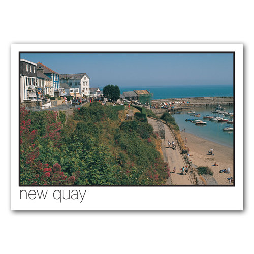 New Quay - Sold in pack (100 postcards)