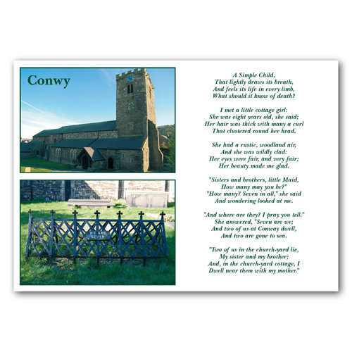 Conwy We are Seven - Sold in pack (100 postcards)
