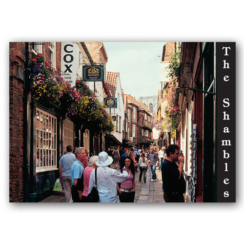 York The Shambles - Sold in pack (100 postcards)