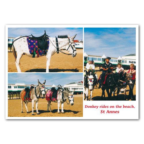 St Anne's Donkeys Comp - Sold in pack (100 postcards)