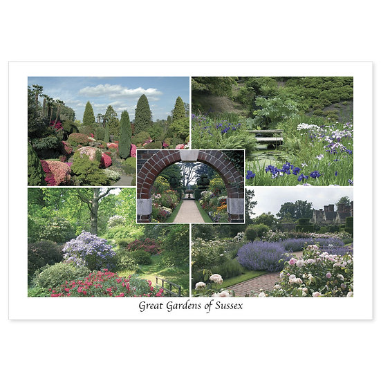 Sussex Gardens - Sold in pack (100 postcards)