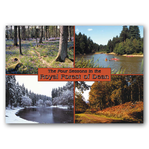 Forest of Dean The Four - Sold in pack (100 postcards)
