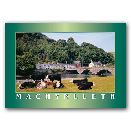 Machynlleth Dovey Bridge - Sold in pack (100 postcards)