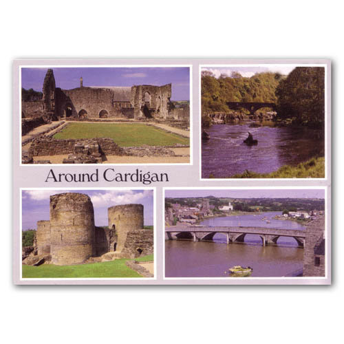 Cardigan Comp - Sold in pack (100 postcards)