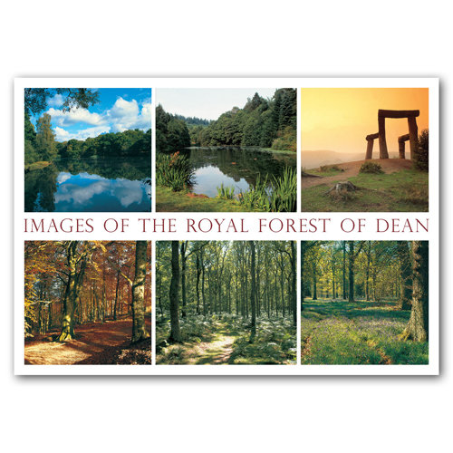 Forest of Dean Images - Sold in pack (100 postcards)
