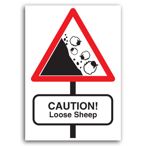 Road Signs - Loose Sheep - Sold in pack (100 postcards)