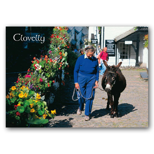 Clovelly - Sold in pack (100 postcards)