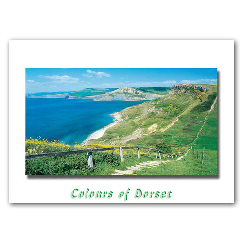 Dorset Just Emmetts Hill - Sold in pack (100 postcards)