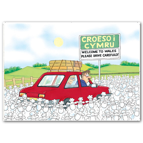 Wales Sheep Drive Carefully - Sold in pack (100 postcards)