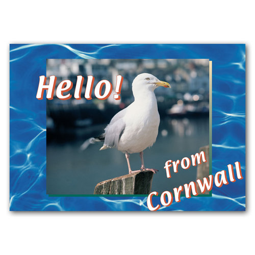 Cornwall Hello From - Sold in pack (100 postcards)