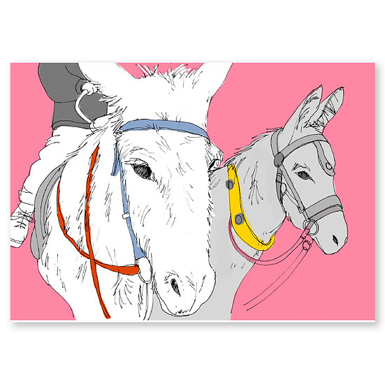 Life's a Beach by Lucy Sheeran : Donkeys - Sold in pack (100 postcards)