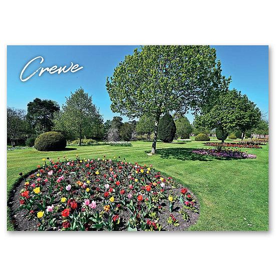 Crewe, Queen's Park - Sold in pack (100 postcards)