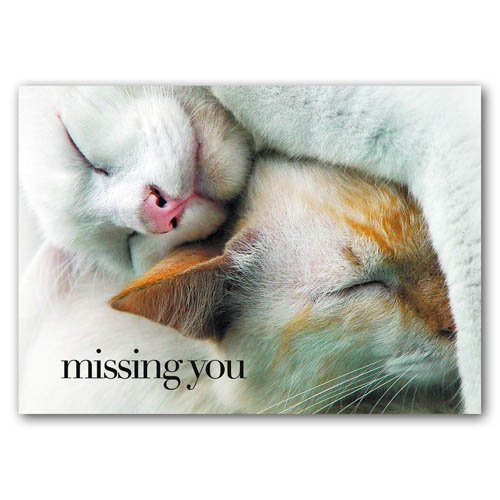 Statement - Missing You - Sold in pack (100 postcards)