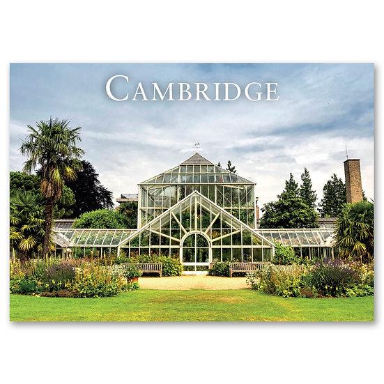 Cambridge, Botanic Garden - Sold in pack (100 postcards)
