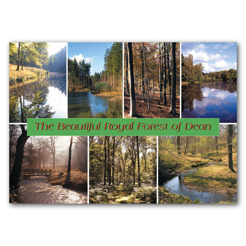 Forest of Dean The Beau - Sold in pack (100 postcards)