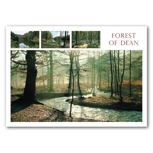 Forest of Dean View Comp - Sold in pack (100 postcards)