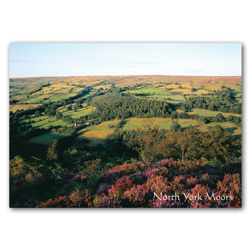 North York Moors - Sold in pack (100 postcards)