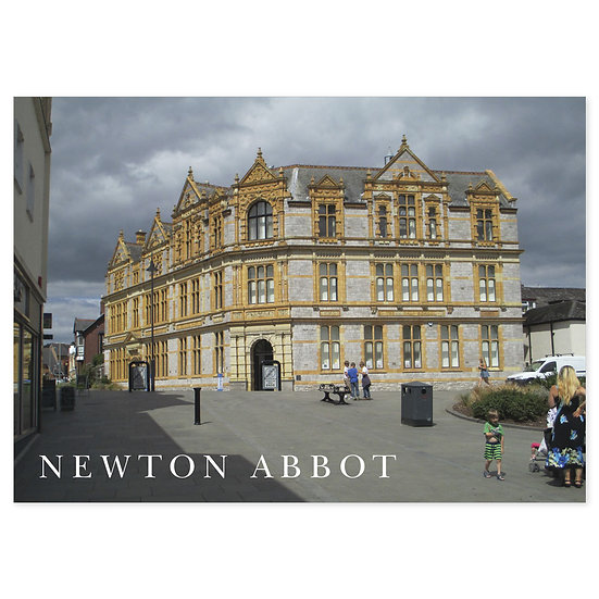 Newton Abbot - Sold in pack (100 postcards)