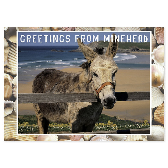 Minehead Greetings From - Donkey - Sold in pack (100 postcards)