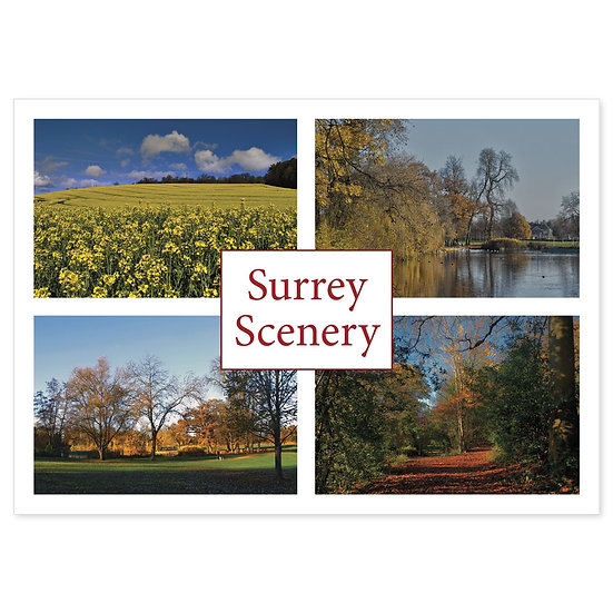 Surrey Scenary Comp - Sold in pack (100 postcards)