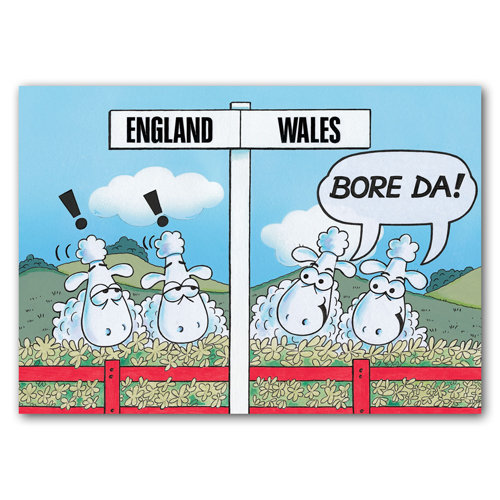Wales Sheep England  Wales Bore Da - Sold in pack (100 postcards)