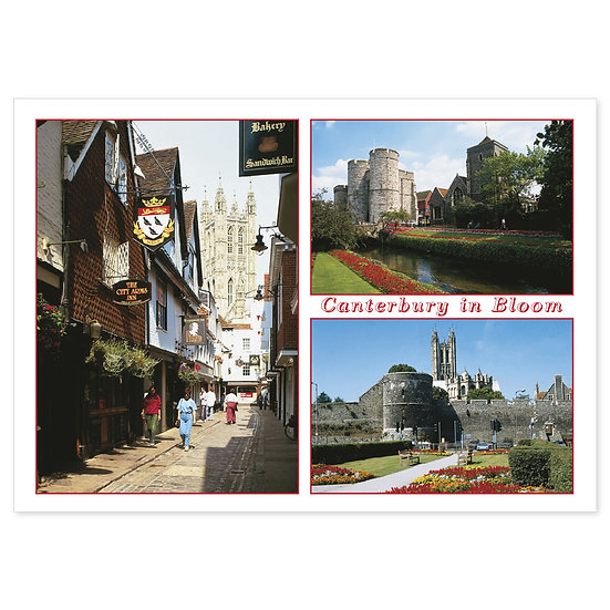 Canterbury in Bloom Compilation - Sold in pack (100 postcards)