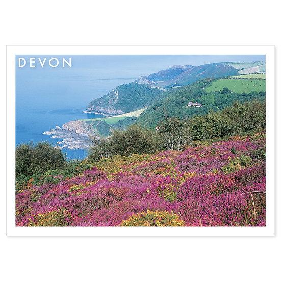 Devon - Sold in pack (100 postcards)