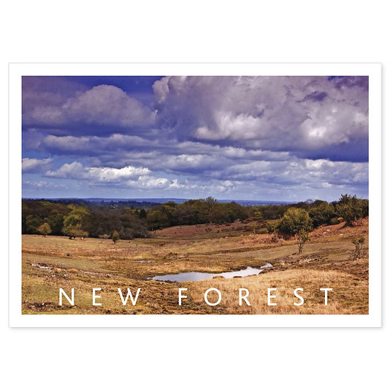 New Forest in Spring - Sold in pack (100 postcards)