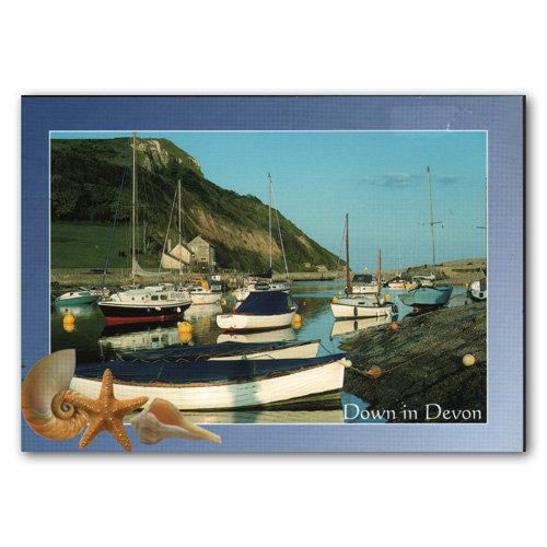 Devon Down In - Sold in pack (100 postcards)