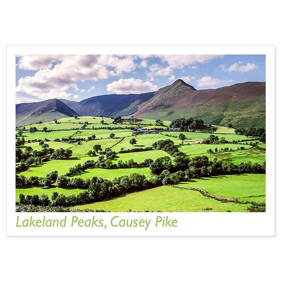 Lakeland Peaks, Causey Pike - Sold in pack (100 postcards)