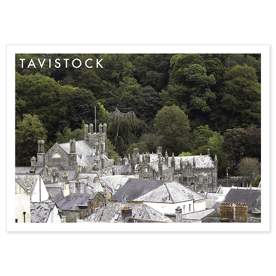 Tavistock Rooftops - Sold in pack (100 postcards)
