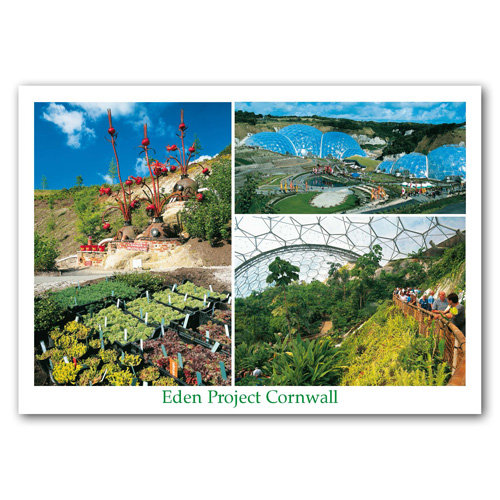 Eden Project Comp - Sold in pack (100 postcards)