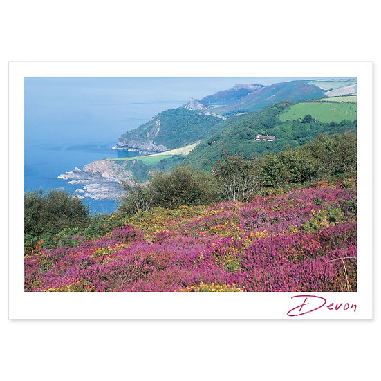 Devon View - Sold in pack (100 postcards)