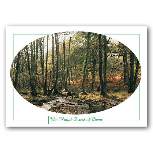 Forest of Dean Cannop Ponds - Sold in pack (100 postcards)