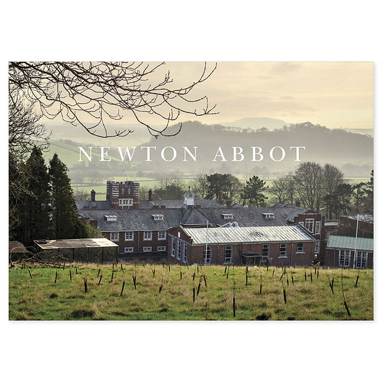 Newton Abbot View - Sold in pack (100 postcards)
