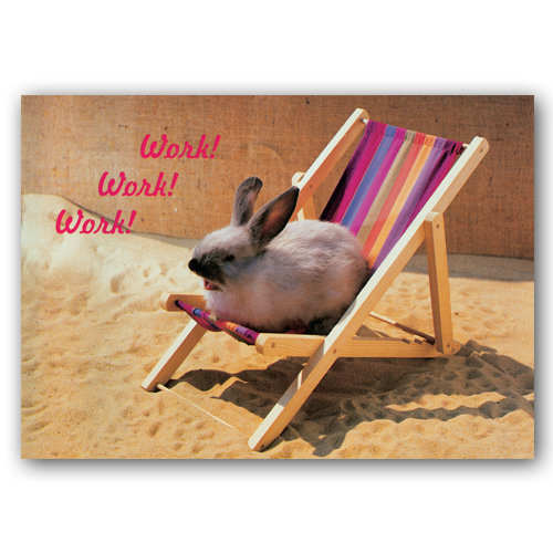 Animal Humour Work - Sold in pack (100 postcards)