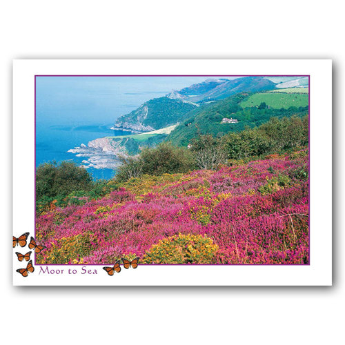 Devon Moor To Sea - Sold in pack (100 postcards)