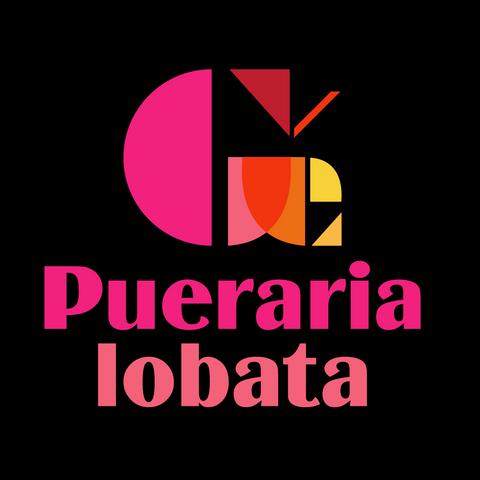 logos-33.png