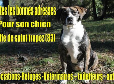 TOUTES LES BONNES ADRESSES POUR SON CHIEN! (83)