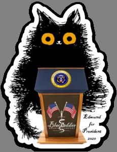 Edmund For President