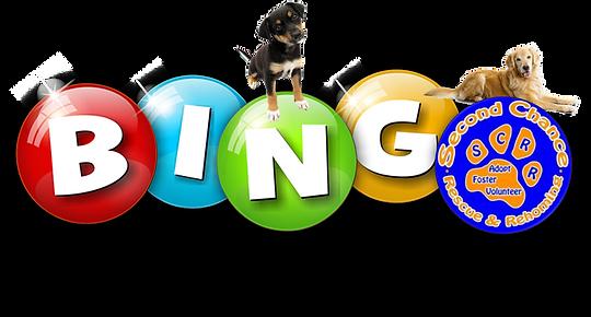 bingo (2).png