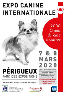 Affiche_PERIGUEUX__N°2_2020-page-001.jpg