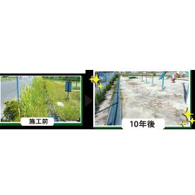 草の生えない不思議な土[1m2あたり]