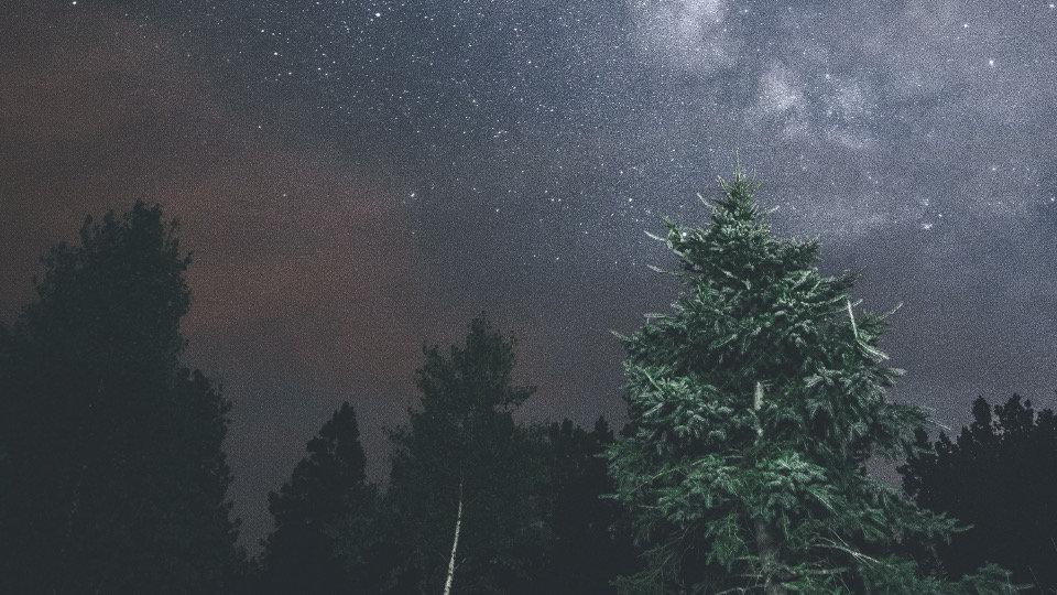 Nachtgebet.jpg