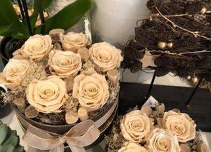 Roses éternelles coffret (2 formats)