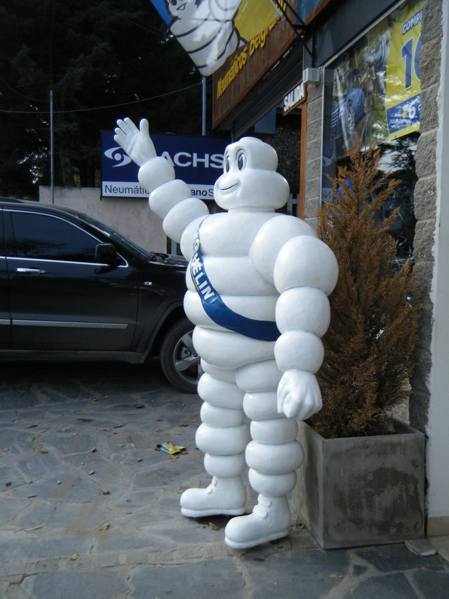 Michelin resina poliester